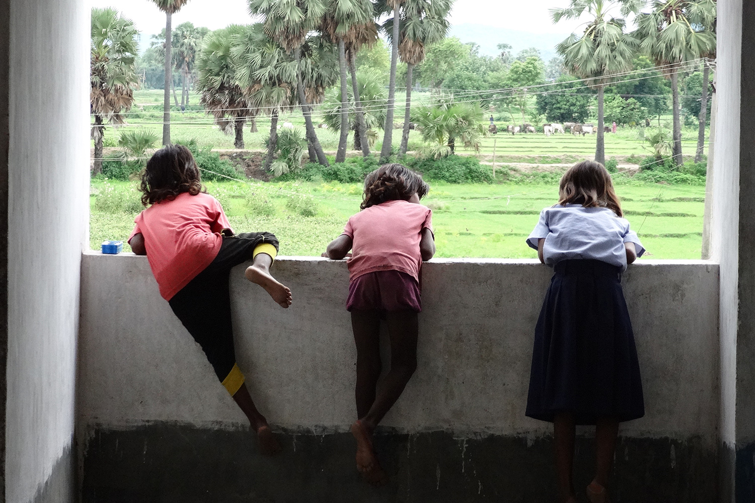 The image shows three children leaning over a wall overlooking green fields and palm trees.