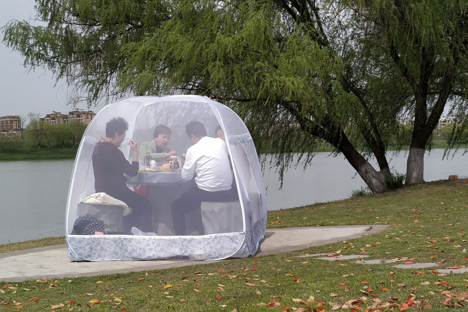 The photo shows a family in a bubble tent in a park on a beautiful day. Picture taken March 24, 2020.
