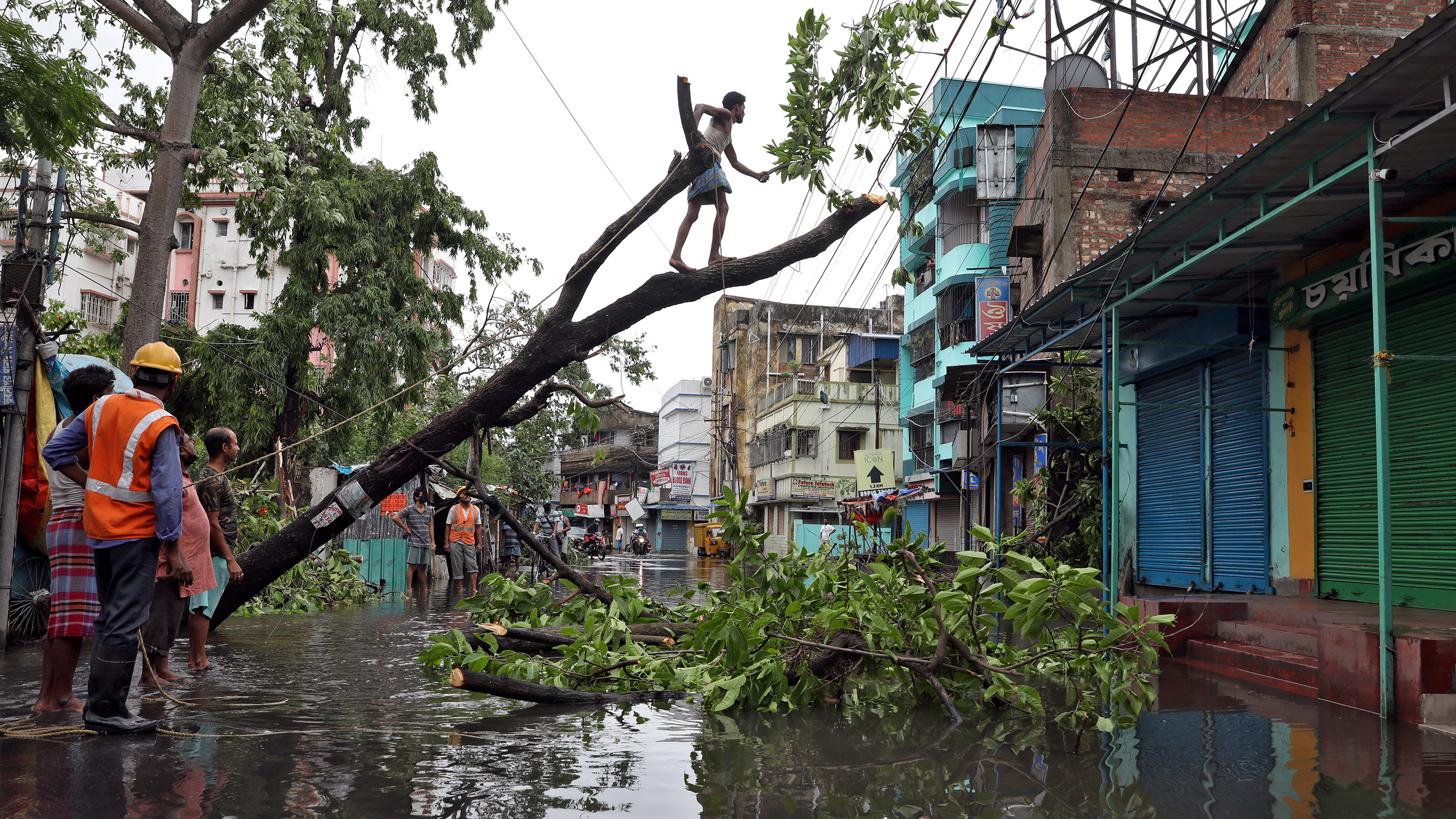 The photo shows a man walking on a limb of a downed tree susopended over a flooded street while a worker in an orange vest looks on.
