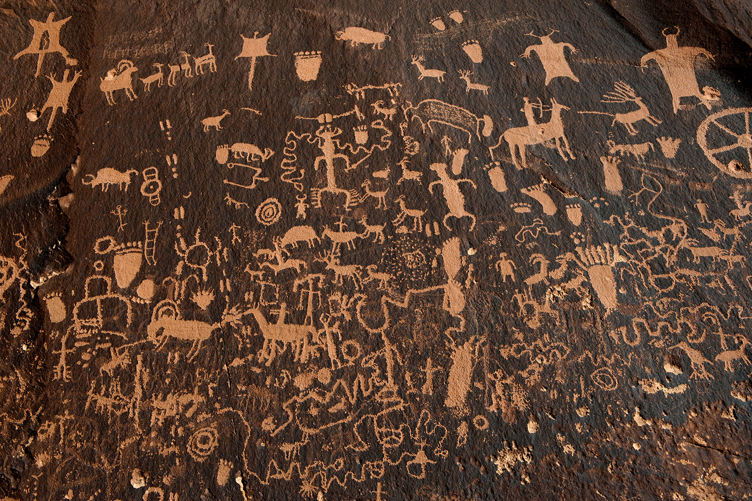 Hundreds of petroglyphs cover Newspaper Rock, in Bears Ears National Monument, Utah, next to the Naajo Nation, on October 29, 2017. The photo shows a dark rock face covered with hundreds of carved depictions of humans and animals. REUTERS/Andrew Cullen