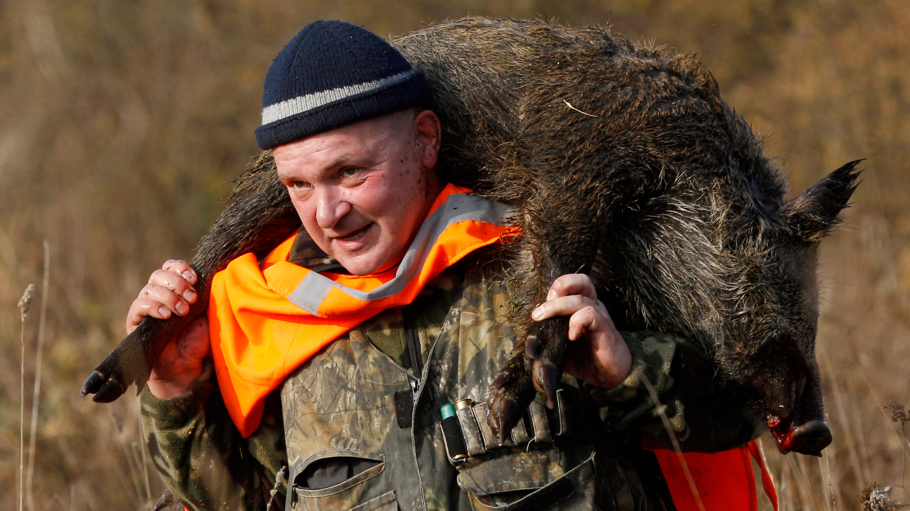 The photo shows a hunter carrying a dead boar on his back.