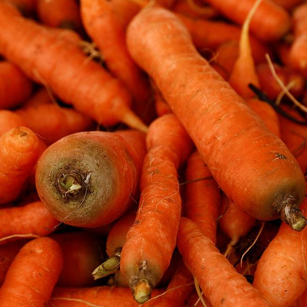 Picture of a huge mound of carrots displayed on a vendor's stand at the Farmers' Market in Ta' Qali