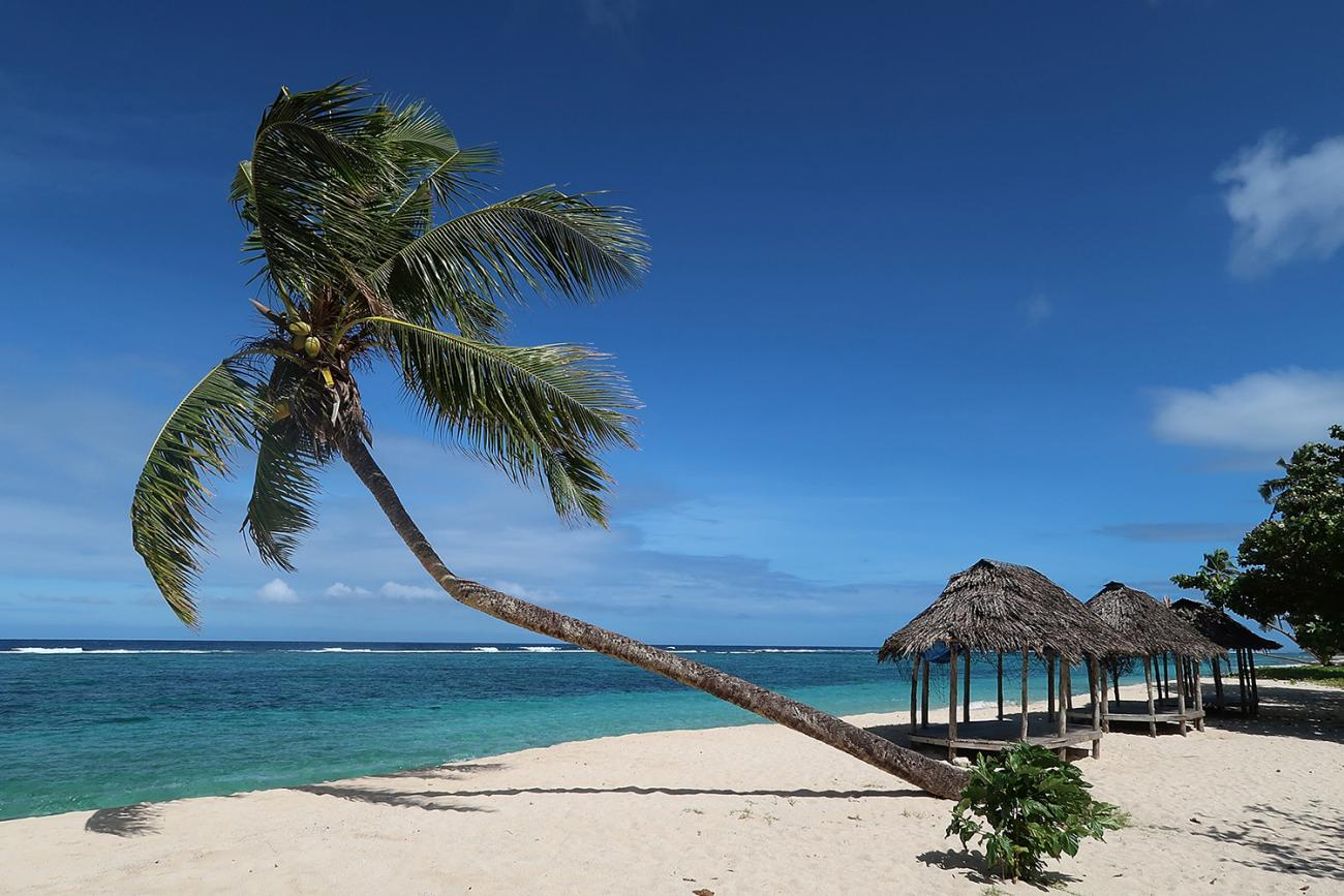 A Samoan beach before the coronavirus crisis—pictured on June 2, 2017 in Saleapaga, Samoa after New Zealand Prime Minister announced a $5.15 million aid package to help boost Samoa's tourism industry. The picture shows a tropical beach in Somoa with gorgeous palm trees and grass huts. GETTY Images/Phil Walter
