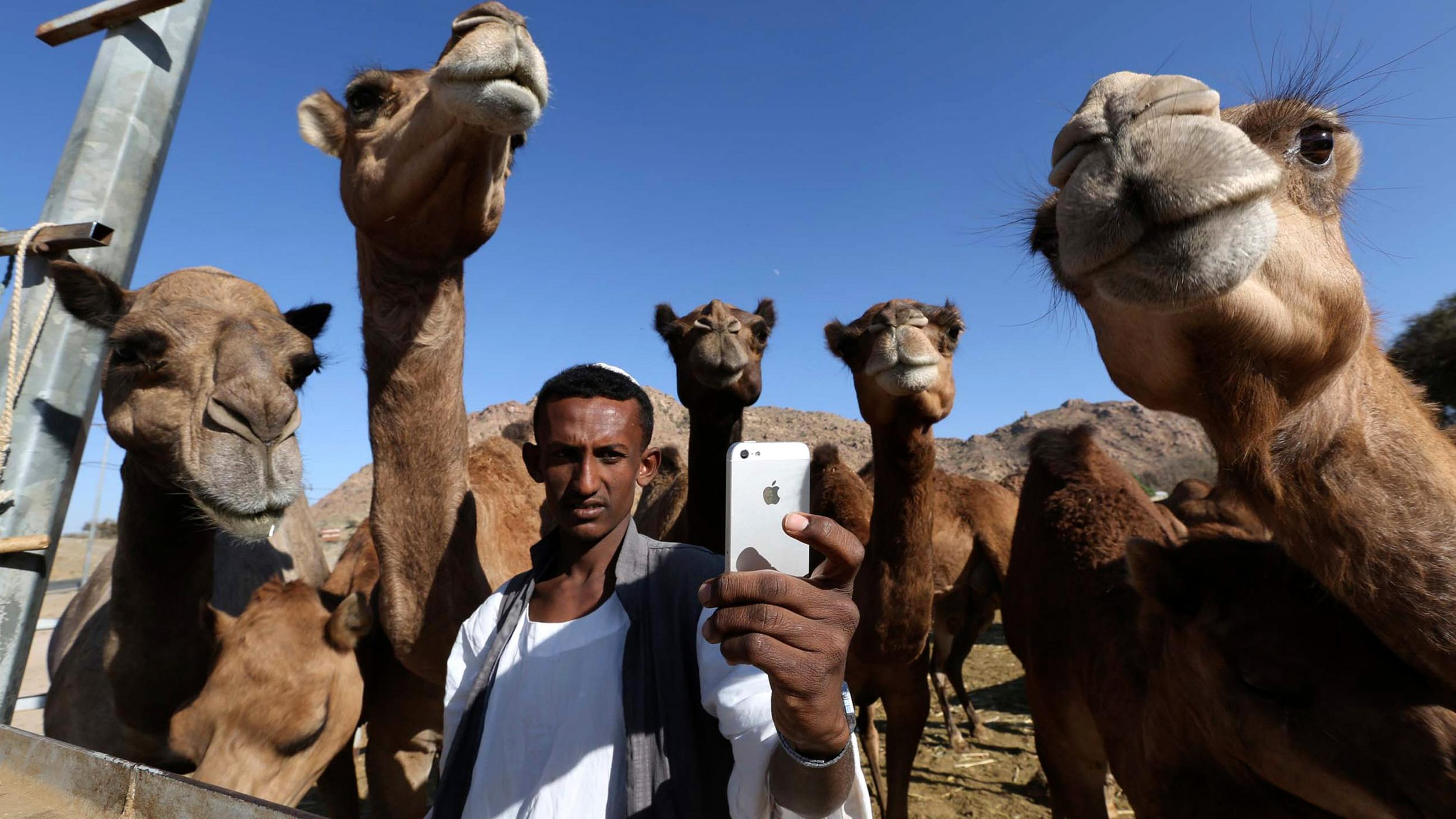 "The photo shows a man taking a ""selfie"" with camels."