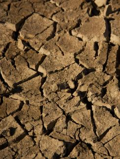 Picture shows a close-up of dried, cracked soil on the edge of Lake Wegnia in Koulikoro, Mali on Nov 23, 2019. Millions in Africa's Sahel region face food insecurity due to drought and conflict. REUTERS/Arouna Sissoko.