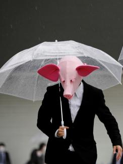 The photo shows two people wearing pig masks and dark suits standing with clear plastic umbrellas open.