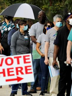 "The photo shows a long line of people wearing facemasks with a simple white sign with red letters announcing, ""VOTE HERE."""